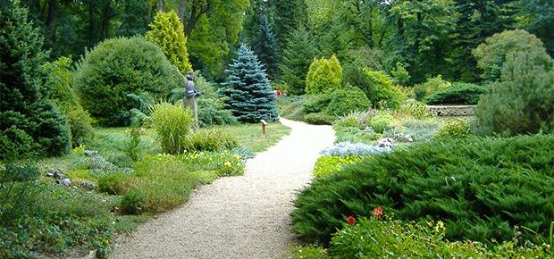 arboretum_thumbnail